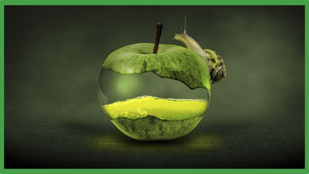ibizaloe manzana