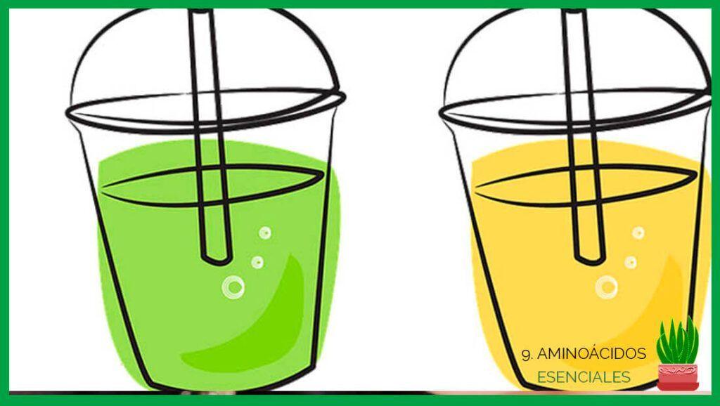 zumo de aloe vera liquido