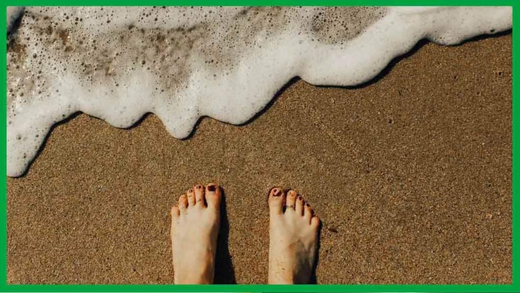 aloe vera para pies